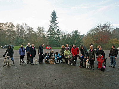 Classes at Padders Dog Training